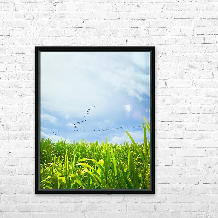 Midsummer Cornfield HD Sublimation Metal print with Decorating Float Frame (BOX)