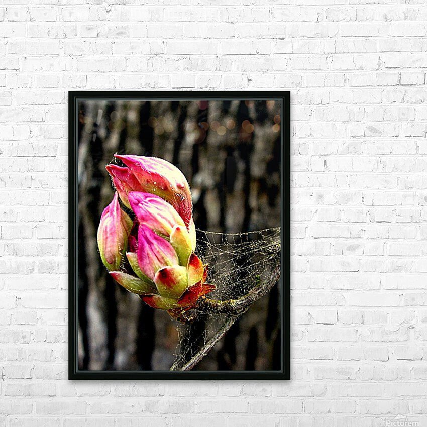 This Buds For You HD Sublimation Metal print with Decorating Float Frame (BOX)