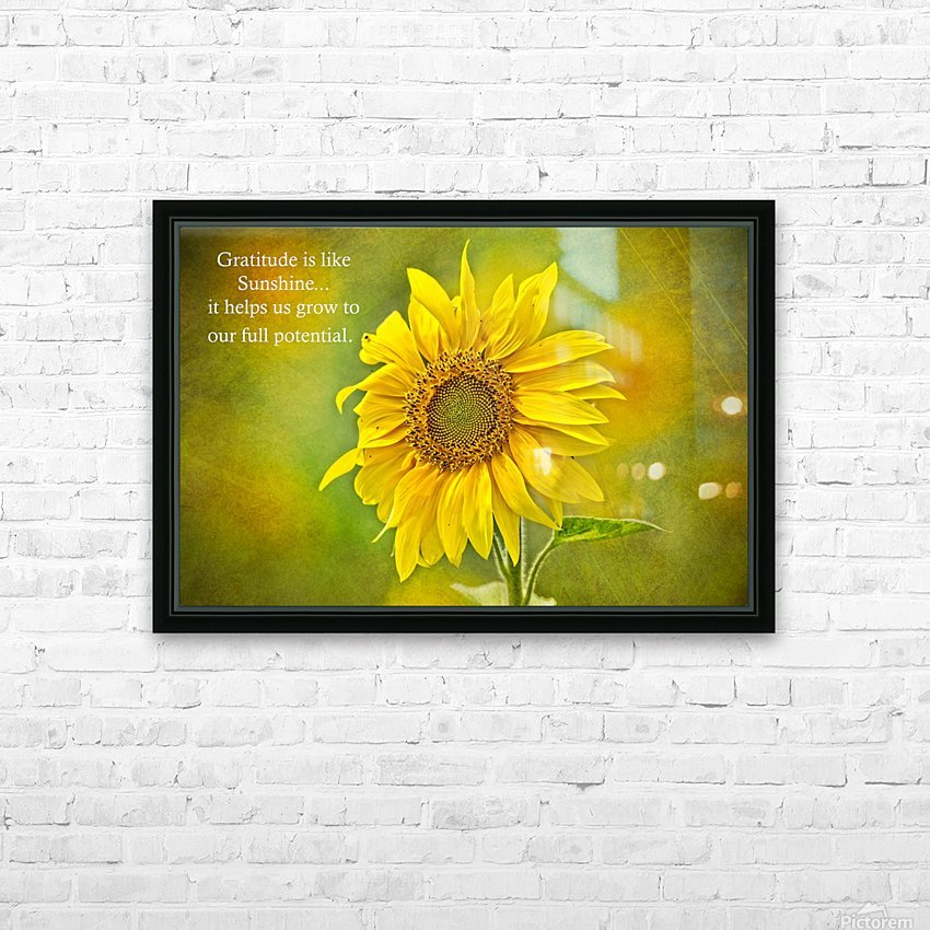 Gratitude is Like Sunshine HD Sublimation Metal print with Decorating Float Frame (BOX)