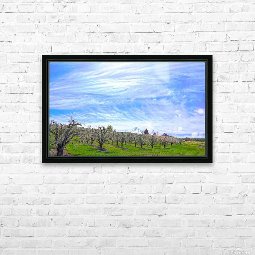 Spring in the Orchard Hood River Valley Oregon HD Sublimation Metal print with Decorating Float Frame (BOX)