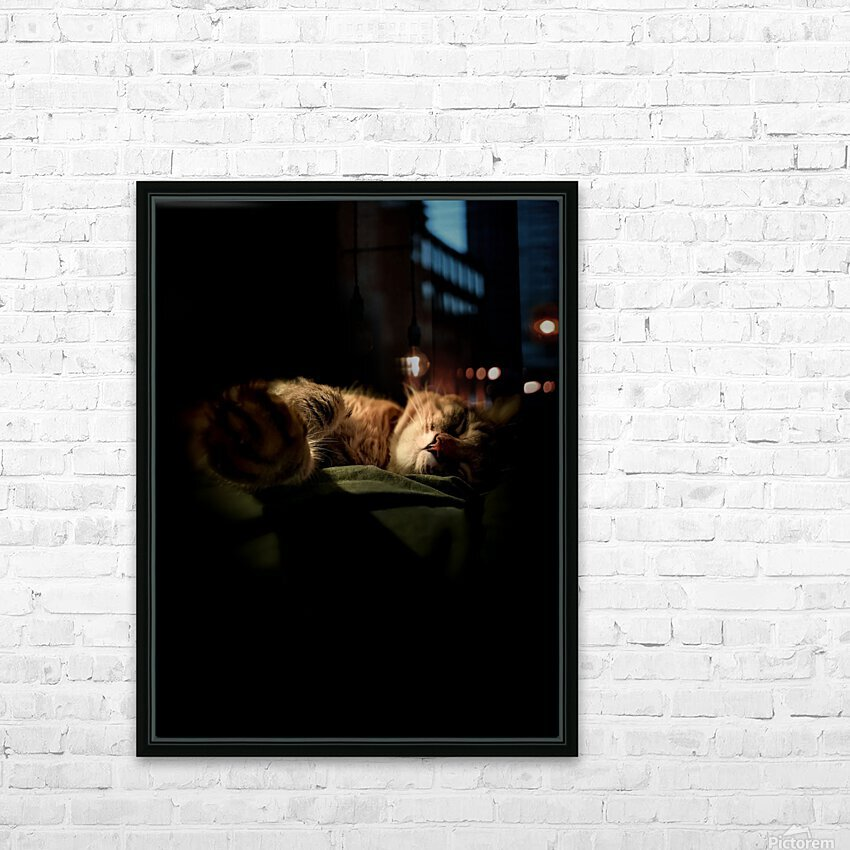 In the Shadows of the Night HD Sublimation Metal print with Decorating Float Frame (BOX)