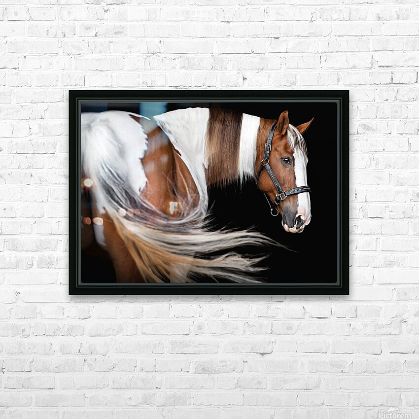 Paint Horse Portrait HD Sublimation Metal print with Decorating Float Frame (BOX)