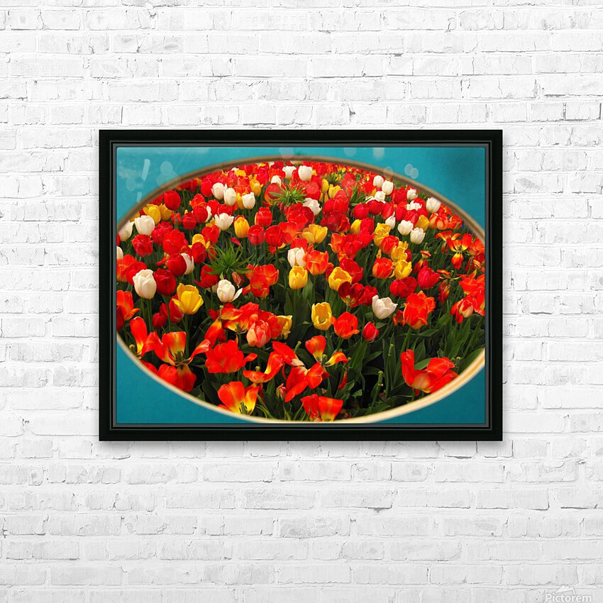Parade of Tulips HD Sublimation Metal print with Decorating Float Frame (BOX)