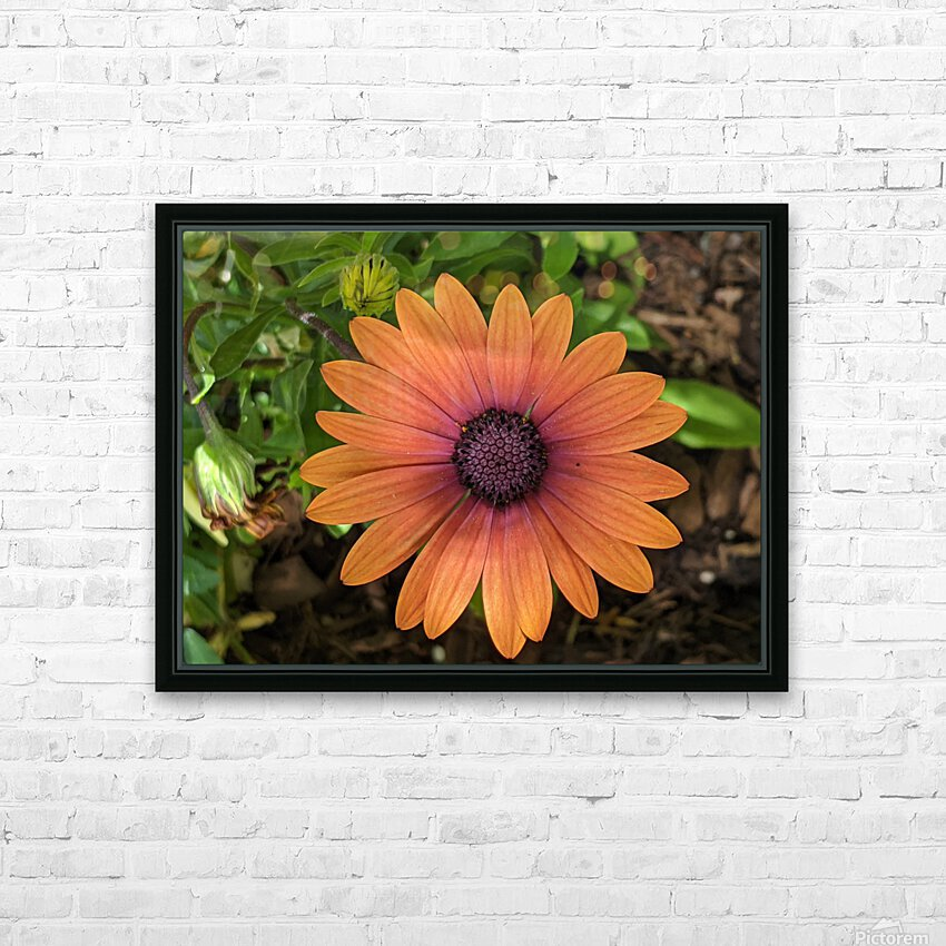 Alive HD Sublimation Metal print with Decorating Float Frame (BOX)