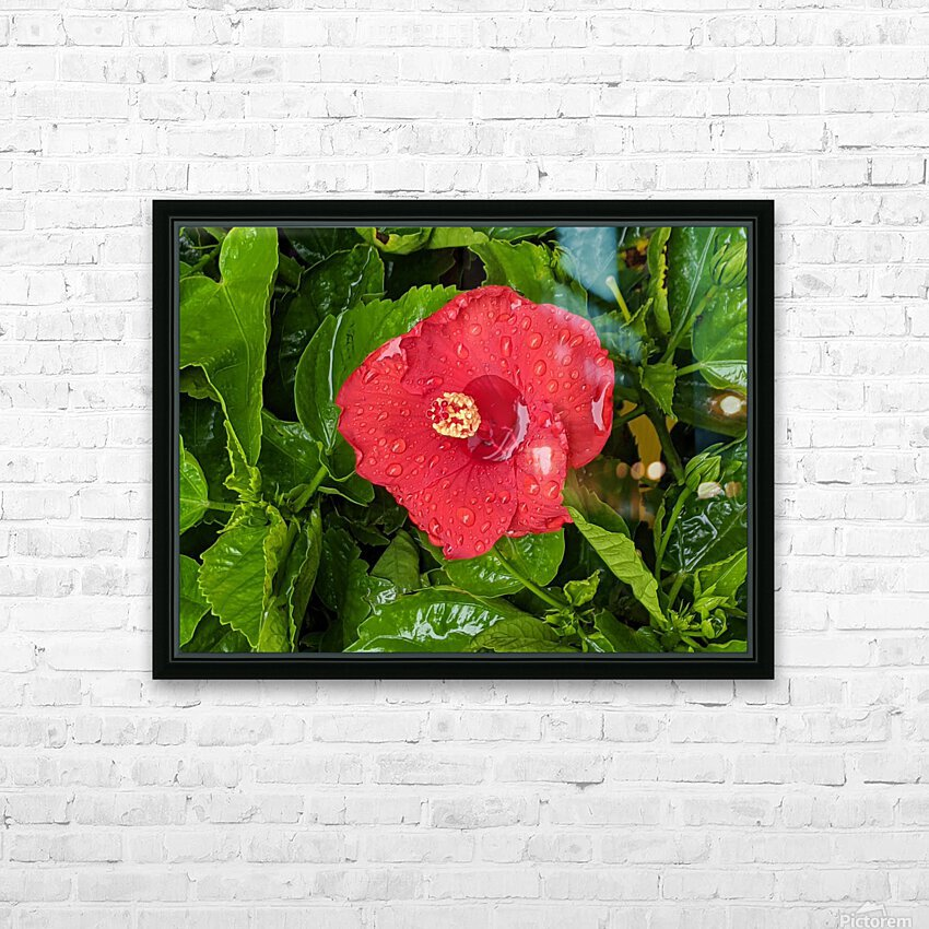 Rain & Nature HD Sublimation Metal print with Decorating Float Frame (BOX)
