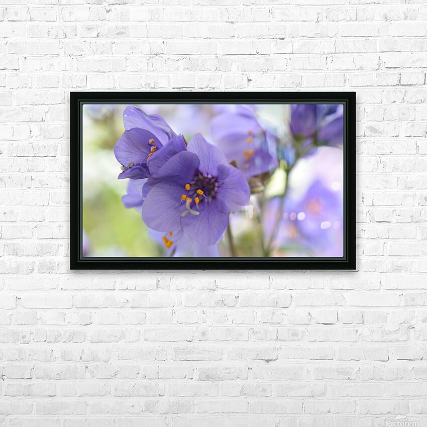 Blue Floral Photograph HD Sublimation Metal print with Decorating Float Frame (BOX)