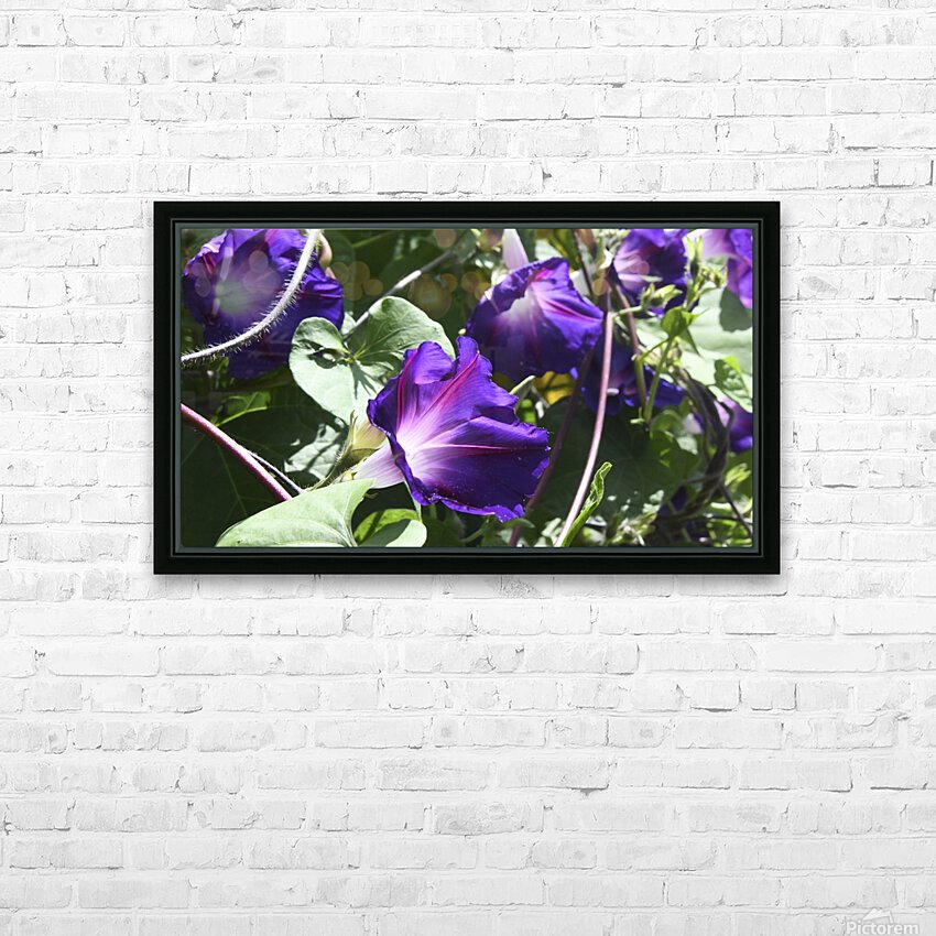 Deep Purple HD Sublimation Metal print with Decorating Float Frame (BOX)