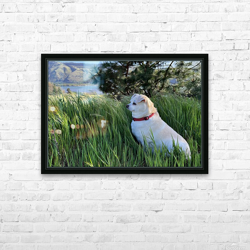 Blossom in Tall Grass HD Sublimation Metal print with Decorating Float Frame (BOX)