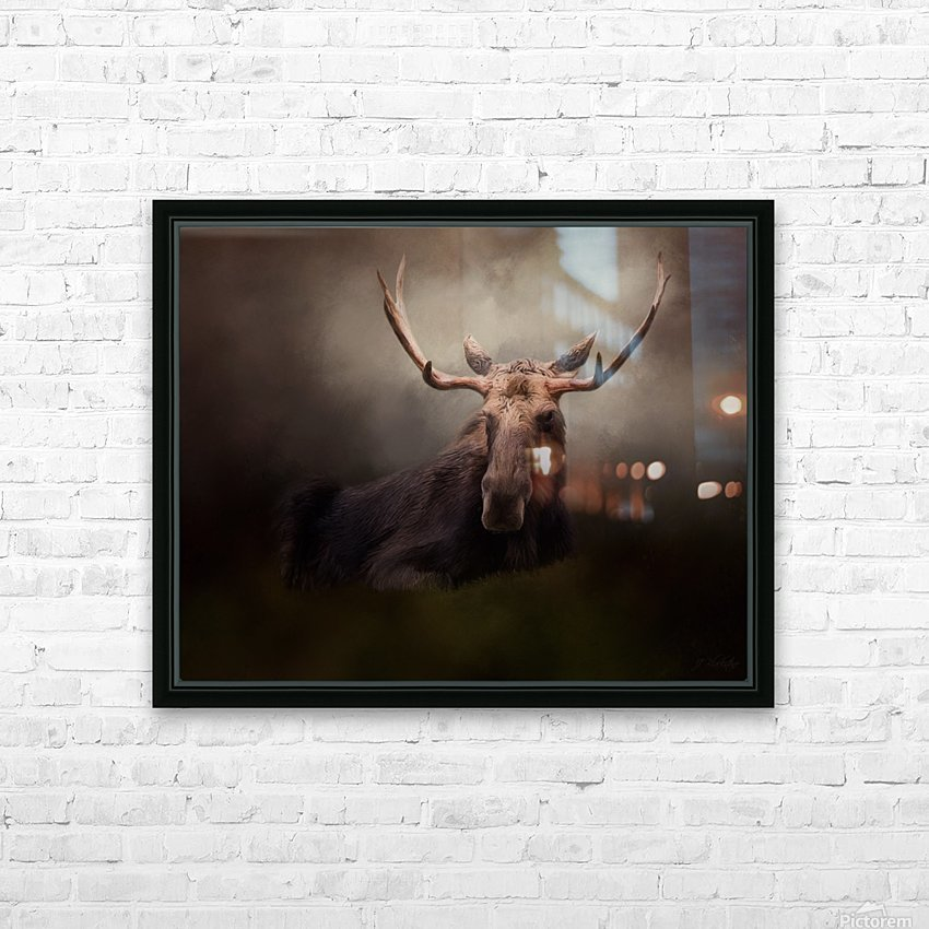 True North - Wildlife Art HD Sublimation Metal print with Decorating Float Frame (BOX)