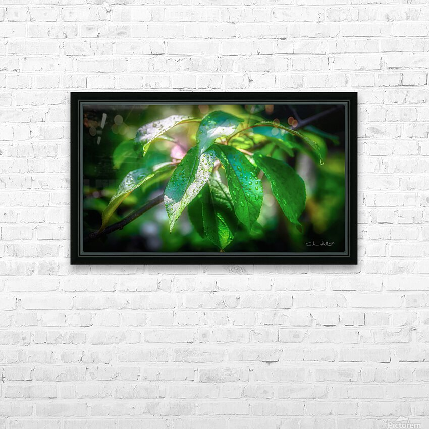 Rosee du matin HD Sublimation Metal print with Decorating Float Frame (BOX)