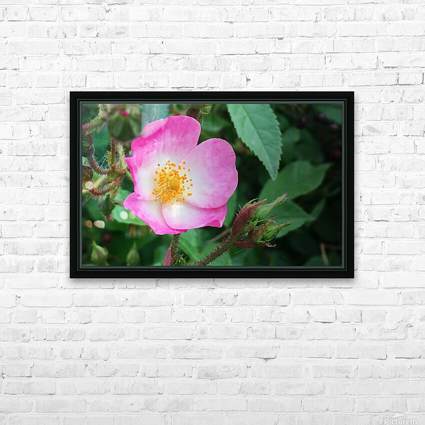 The Bloom HD Sublimation Metal print with Decorating Float Frame (BOX)