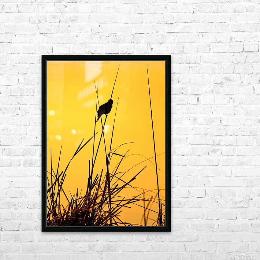 Song of First Light  HD Sublimation Metal print with Decorating Float Frame (BOX)