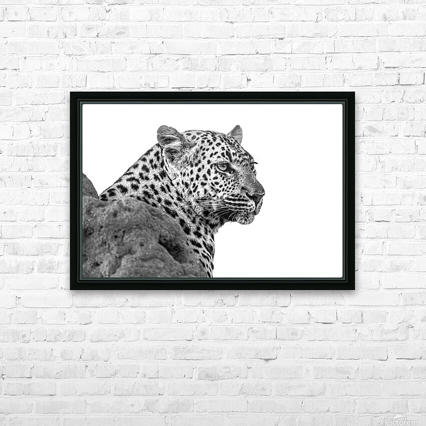 Leopard - B&W HD Sublimation Metal print with Decorating Float Frame (BOX)