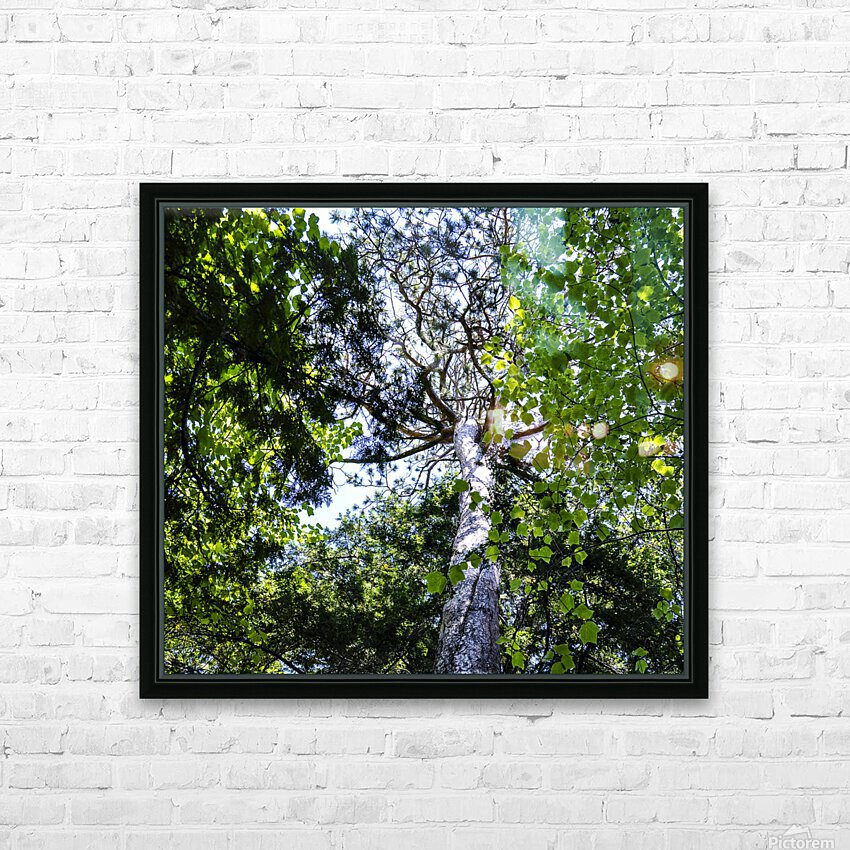 Skyview Canopy HD Sublimation Metal print with Decorating Float Frame (BOX)