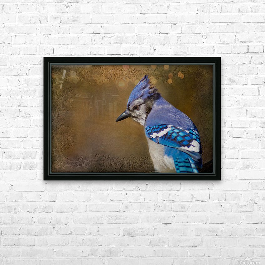 Blue Jay with texture HD Sublimation Metal print with Decorating Float Frame (BOX)