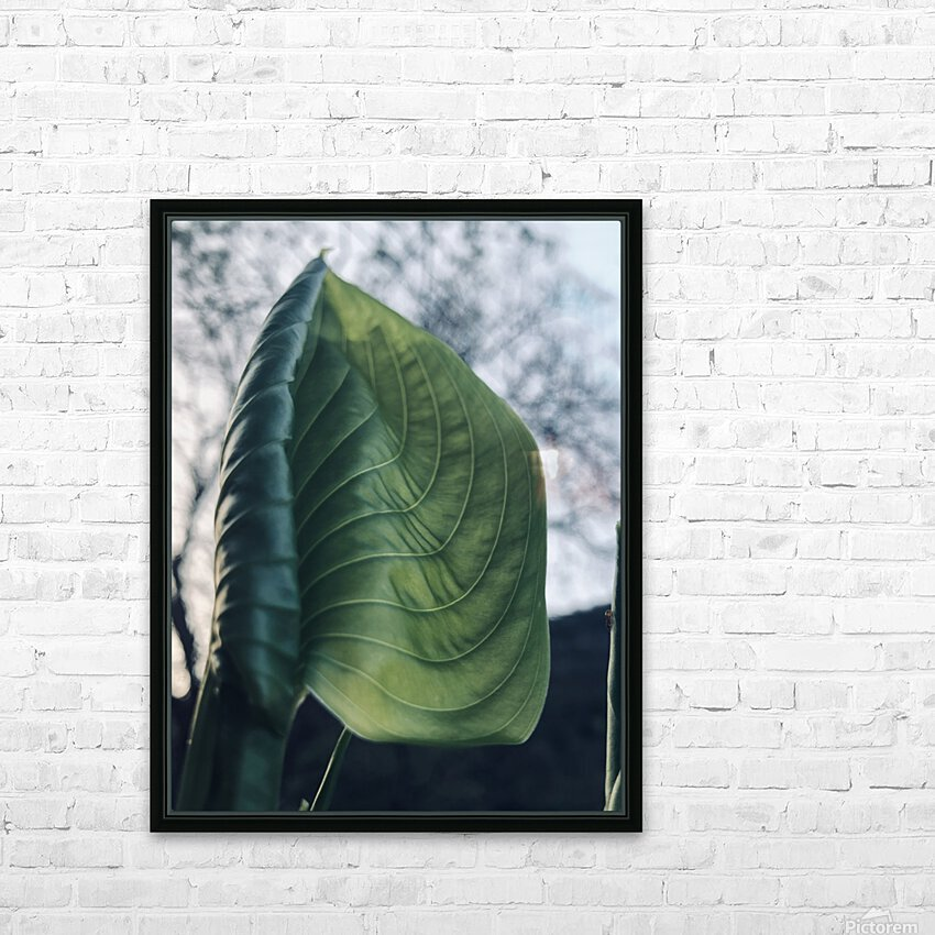 F6F05526 9B0D 4769 8FA5 4C4D8CBF9D82 HD Sublimation Metal print with Decorating Float Frame (BOX)