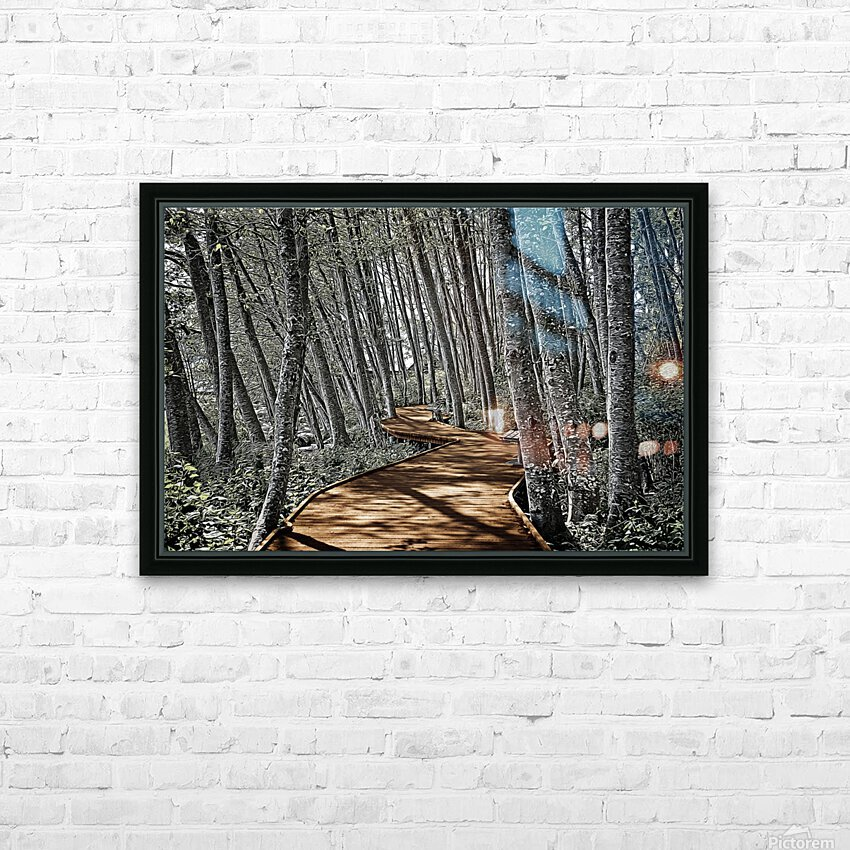 Boardwalk in the Woods HD Sublimation Metal print with Decorating Float Frame (BOX)