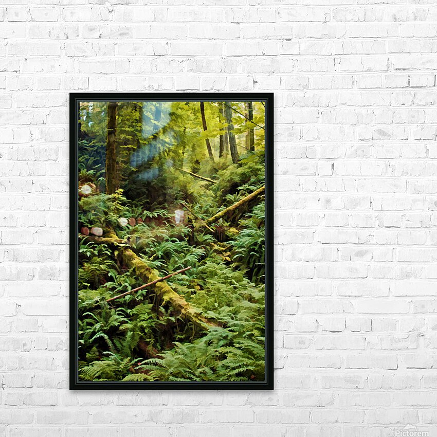 Fern Hollow HD Sublimation Metal print with Decorating Float Frame (BOX)