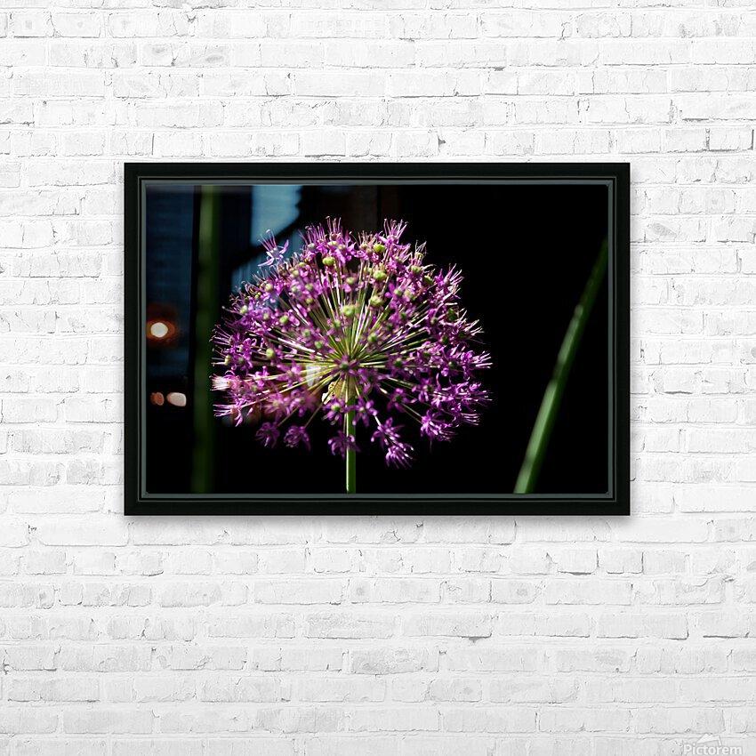 Purple Allium HD Sublimation Metal print with Decorating Float Frame (BOX)