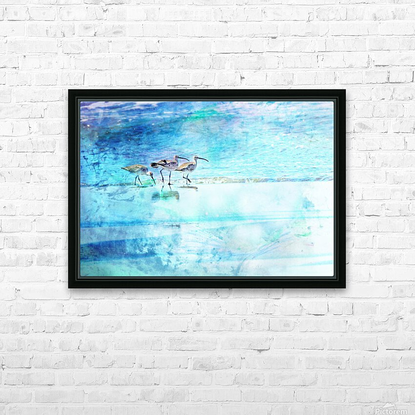 Three Whimbrels HD Sublimation Metal print with Decorating Float Frame (BOX)