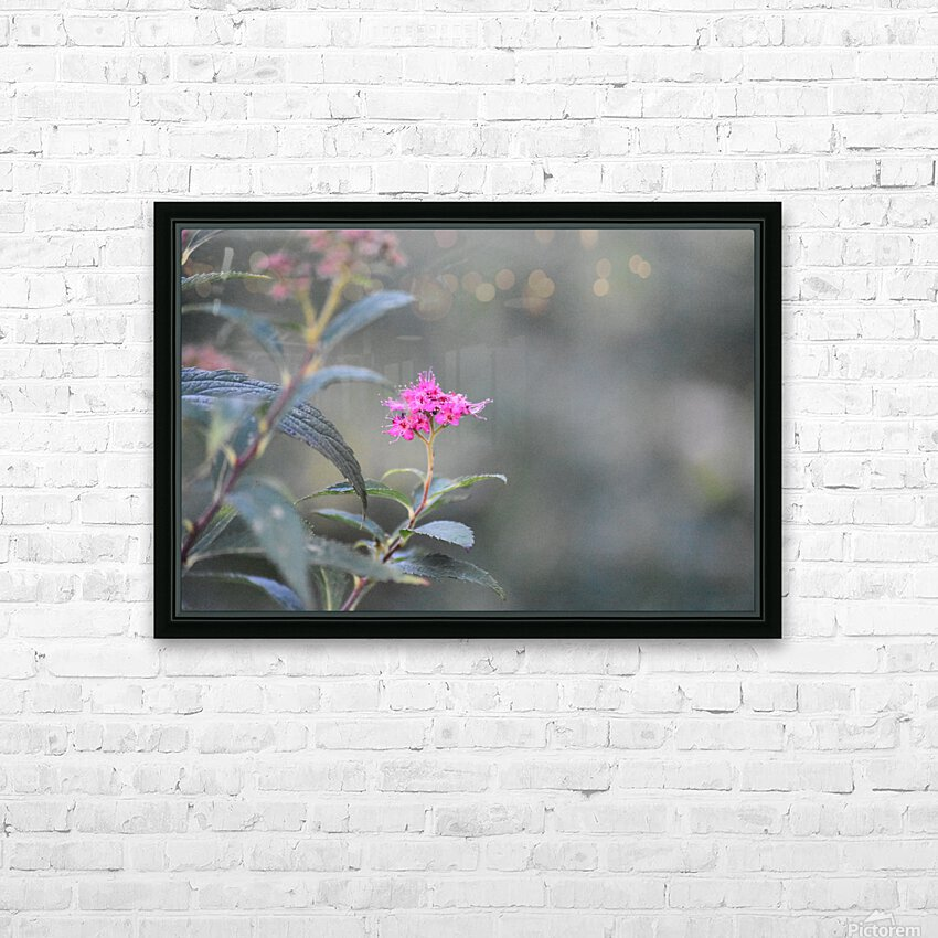 2965 HD Sublimation Metal print with Decorating Float Frame (BOX)