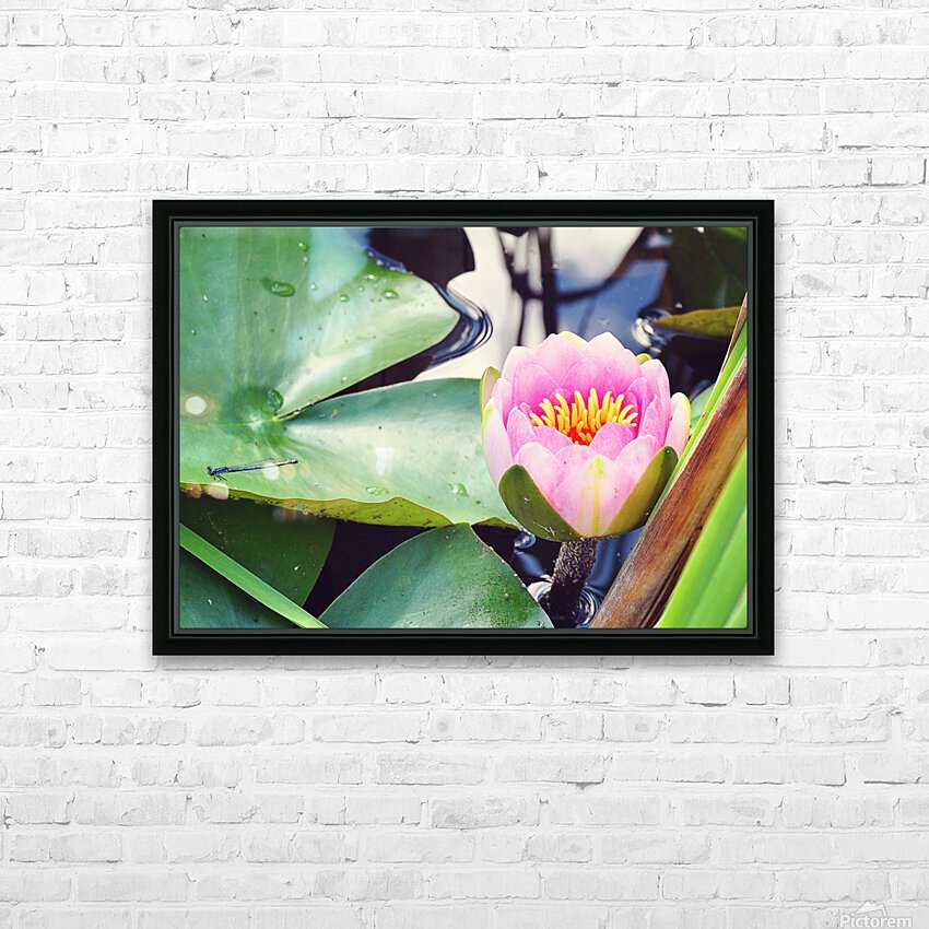 Dragonfly And Lily HD Sublimation Metal print with Decorating Float Frame (BOX)