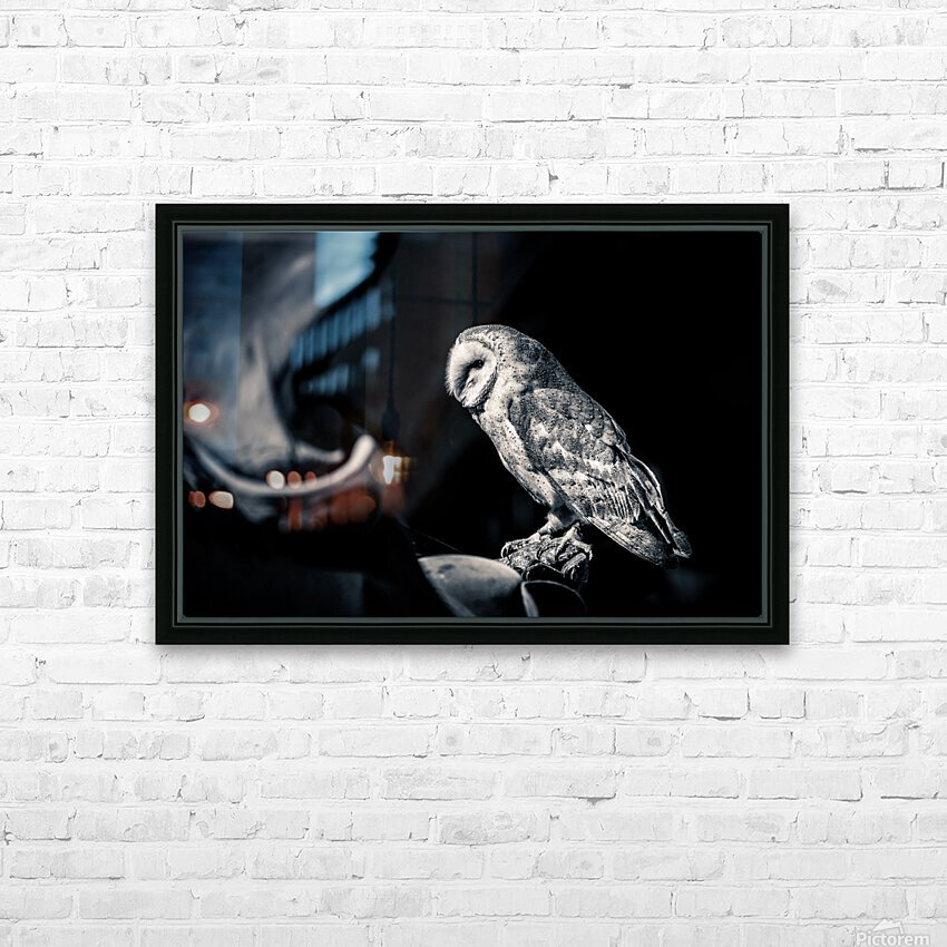 Barn owl HD Sublimation Metal print with Decorating Float Frame (BOX)