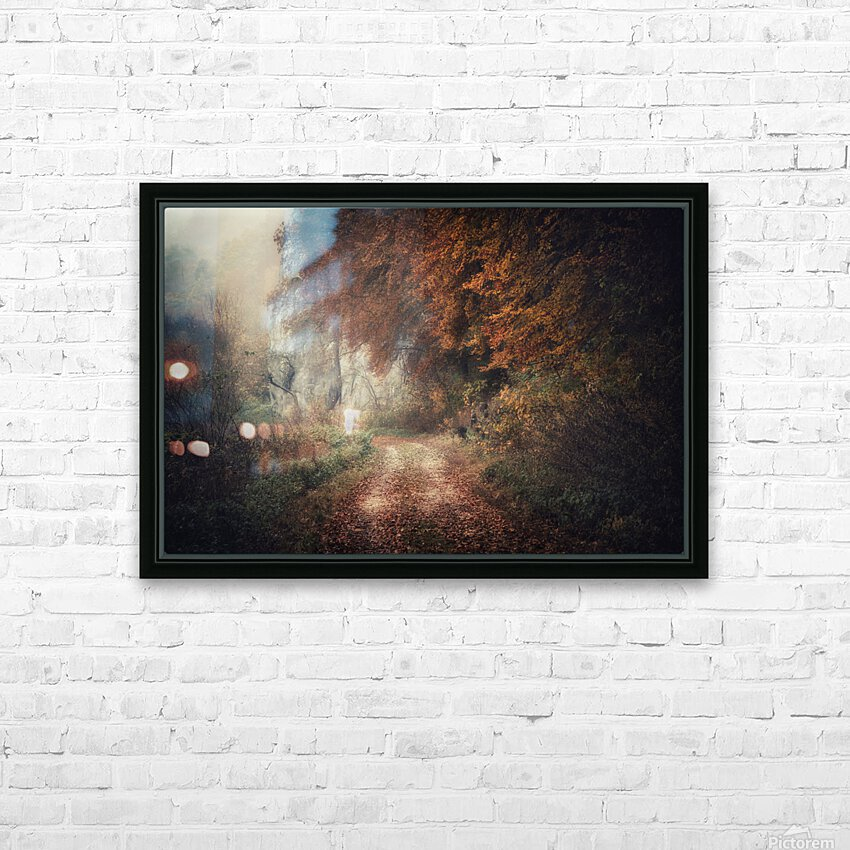 Foggy autumn forest HD Sublimation Metal print with Decorating Float Frame (BOX)