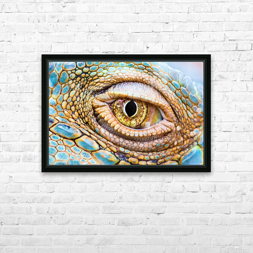 Eye of the dragon HD Sublimation Metal print with Decorating Float Frame (BOX)