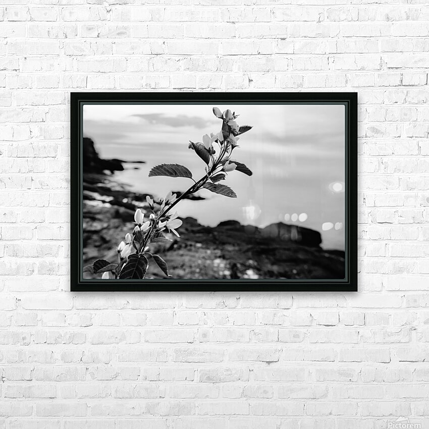Elegance  HD Sublimation Metal print with Decorating Float Frame (BOX)