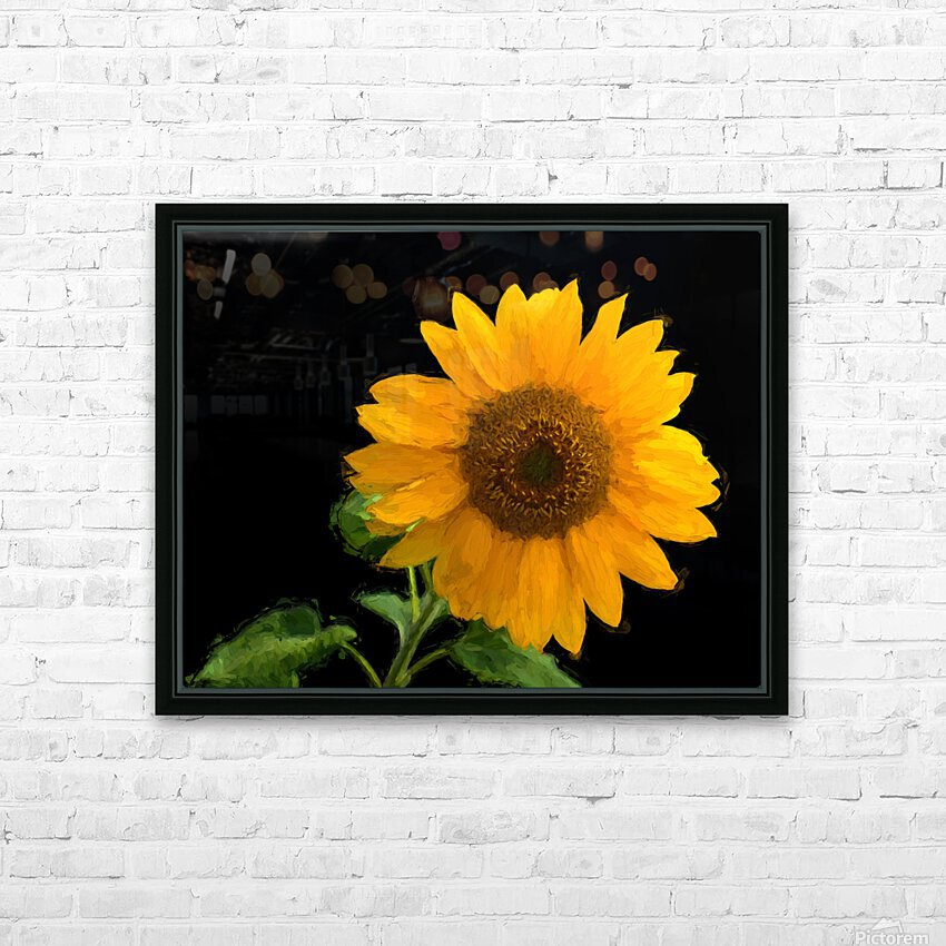 Solitary Sunflower HD Sublimation Metal print with Decorating Float Frame (BOX)