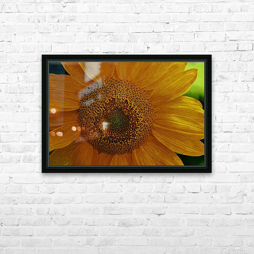Enhanced Sunflower HD Sublimation Metal print with Decorating Float Frame (BOX)