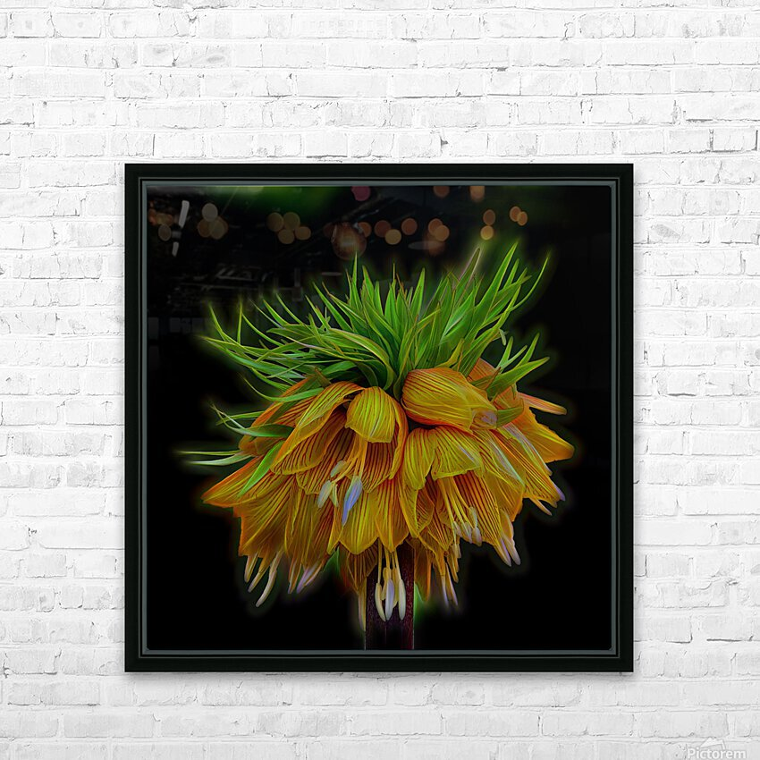 Crown Imperial HD Sublimation Metal print with Decorating Float Frame (BOX)