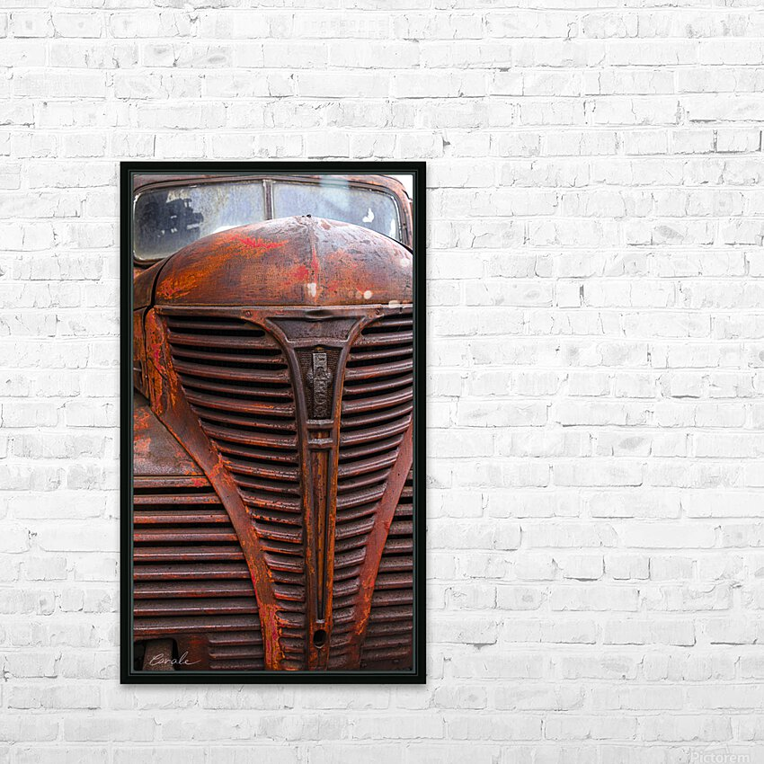 Belle vieille carcasse - Beautiful Old Carcass HD Sublimation Metal print with Decorating Float Frame (BOX)