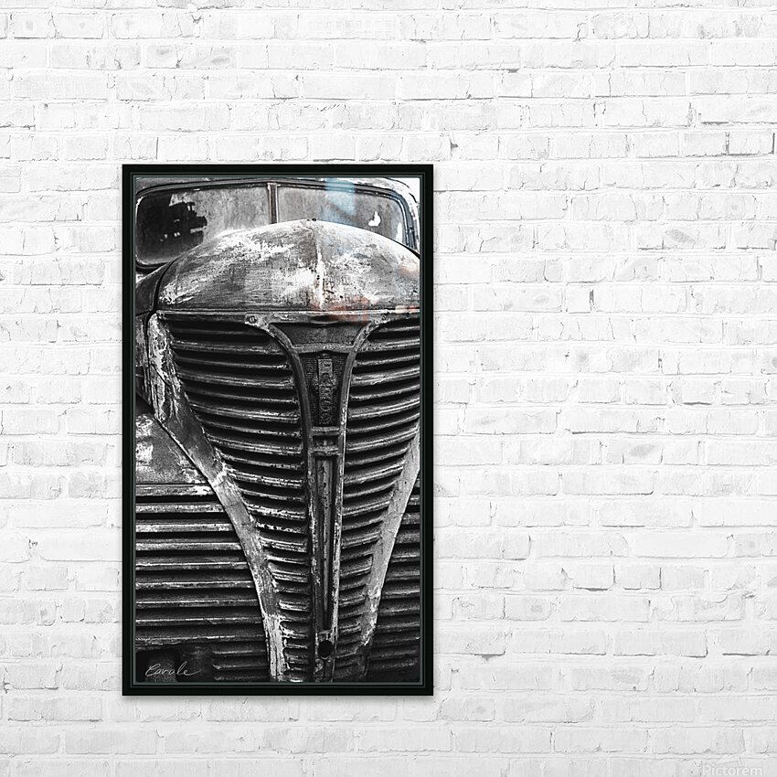 Belle vieille carcasse - Beautiful Old Carcass N&B HD Sublimation Metal print with Decorating Float Frame (BOX)