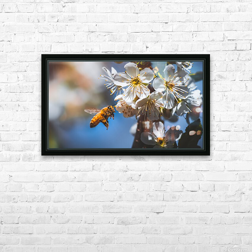 Blossom & The Bee HD Sublimation Metal print with Decorating Float Frame (BOX)