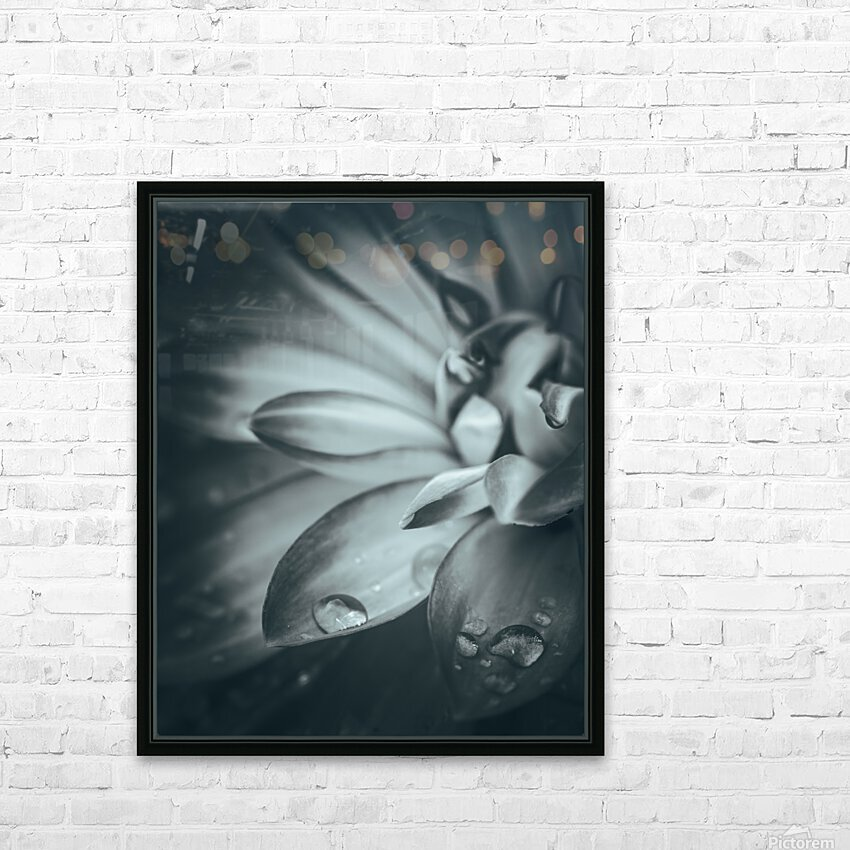 Flowerful Study In A Monochromatic Vibe HD Sublimation Metal print with Decorating Float Frame (BOX)