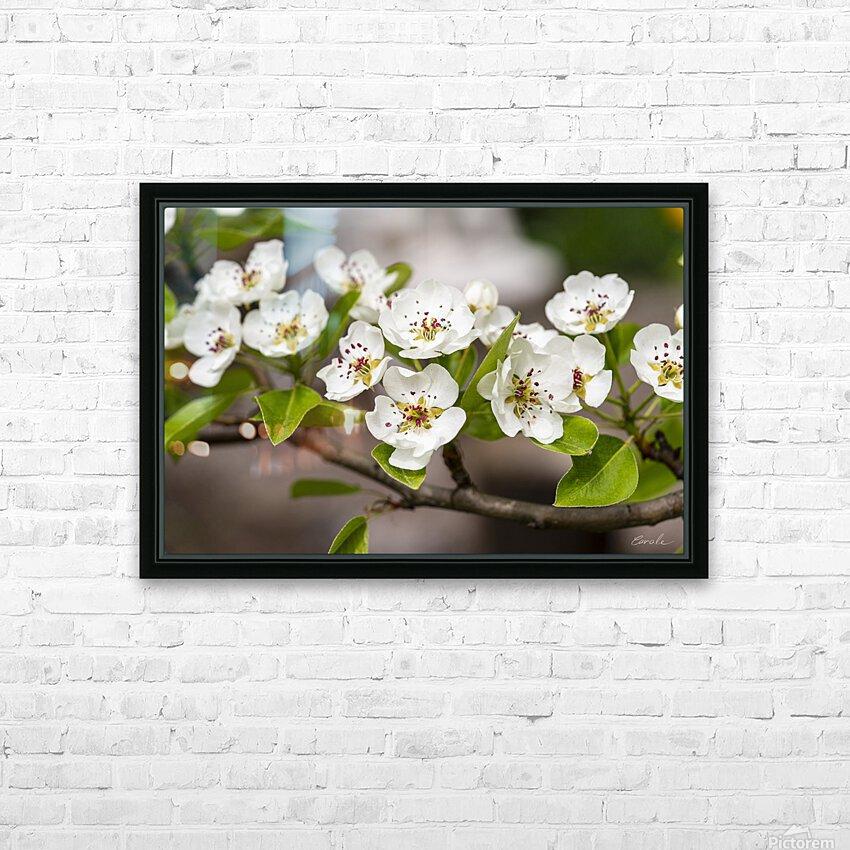 Poirier en fleurs 2 HD Sublimation Metal print with Decorating Float Frame (BOX)