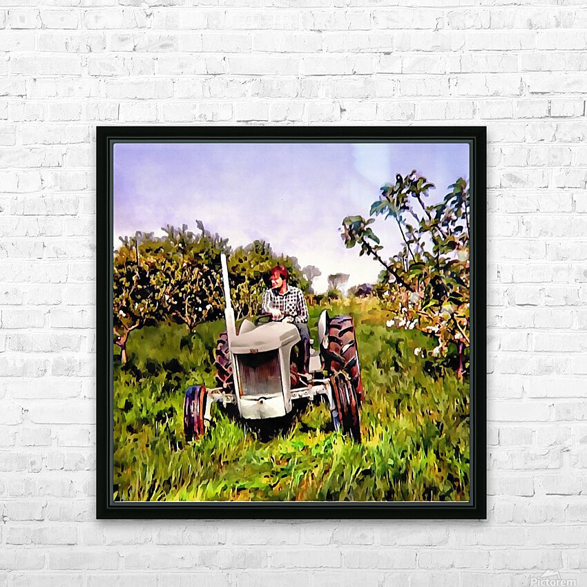 One Man And His Fergie Tractor HD Sublimation Metal print with Decorating Float Frame (BOX)