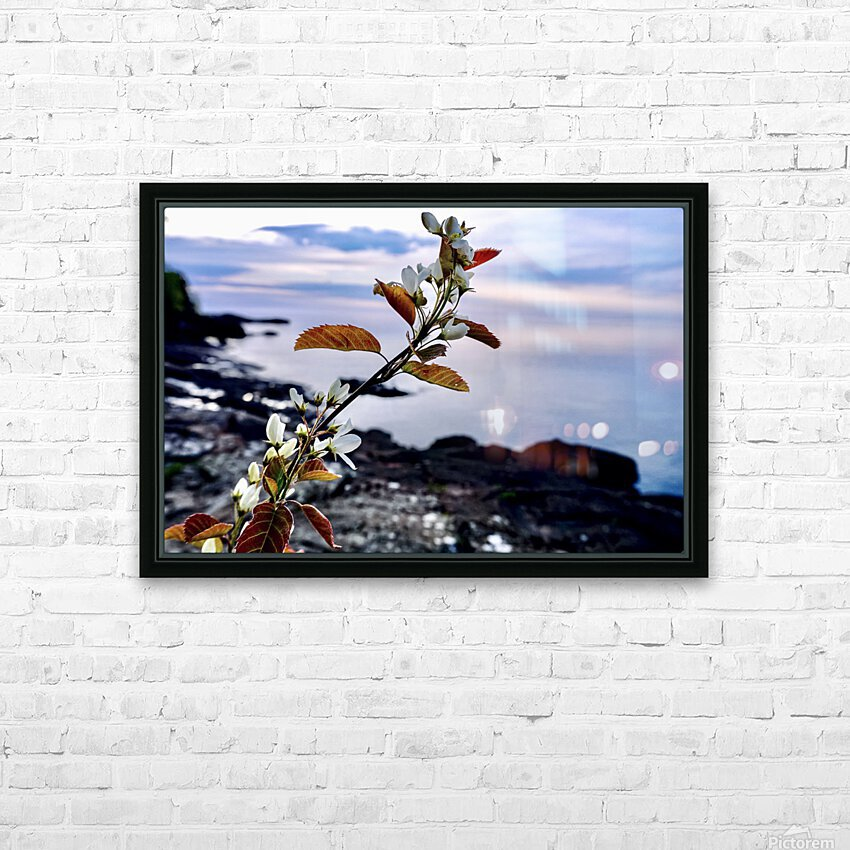 Flower on the Shoreline HD Sublimation Metal print with Decorating Float Frame (BOX)