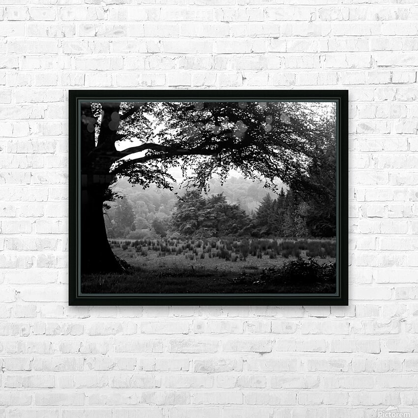 Black and White Field HD Sublimation Metal print with Decorating Float Frame (BOX)