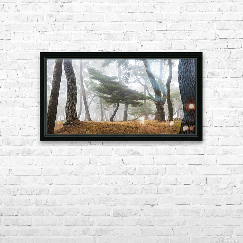 In The Misty Pine Forest HD Sublimation Metal print with Decorating Float Frame (BOX)