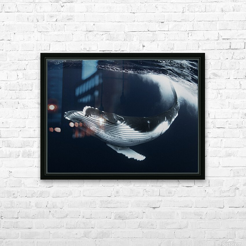 Beautiful turn HD Sublimation Metal print with Decorating Float Frame (BOX)