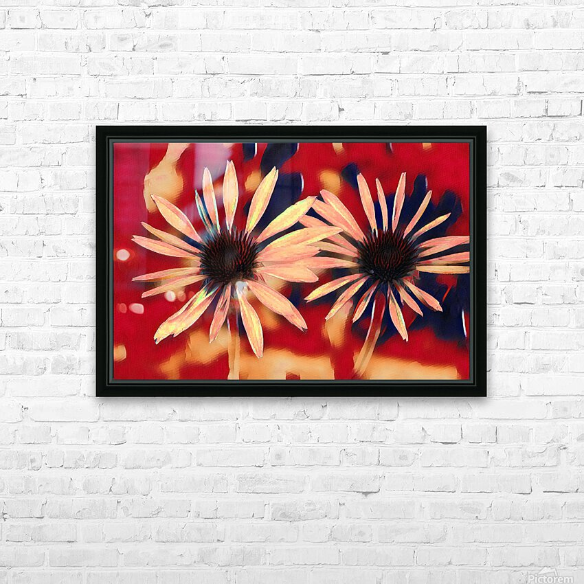 Two Coneflowers HD Sublimation Metal print with Decorating Float Frame (BOX)