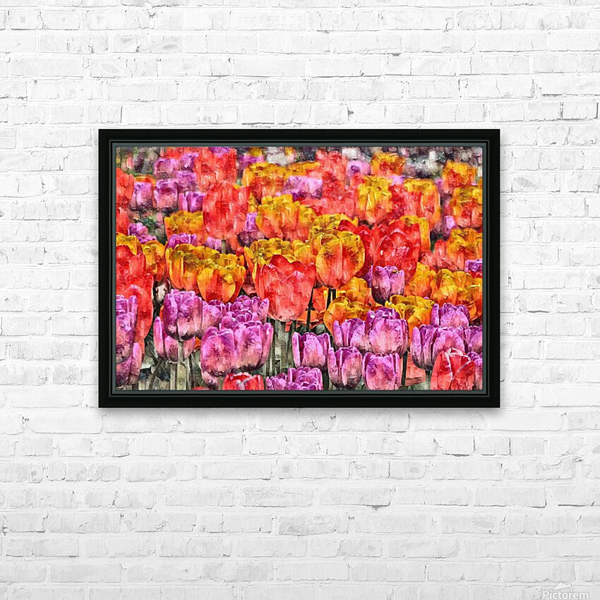 Tulips at Roozengaarde HD Sublimation Metal print with Decorating Float Frame (BOX)