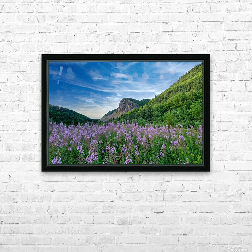 Fireweed at La Grand Falaise HD Sublimation Metal print with Decorating Float Frame (BOX)