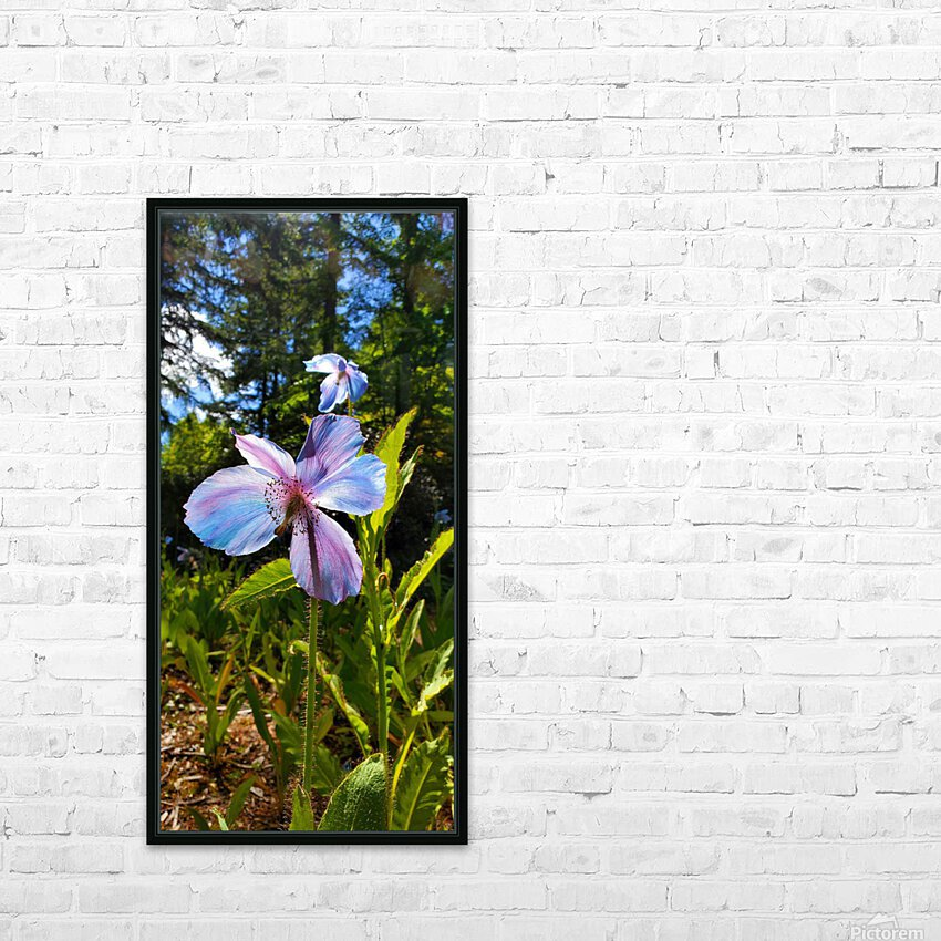 Poppy Blue HD Sublimation Metal print with Decorating Float Frame (BOX)