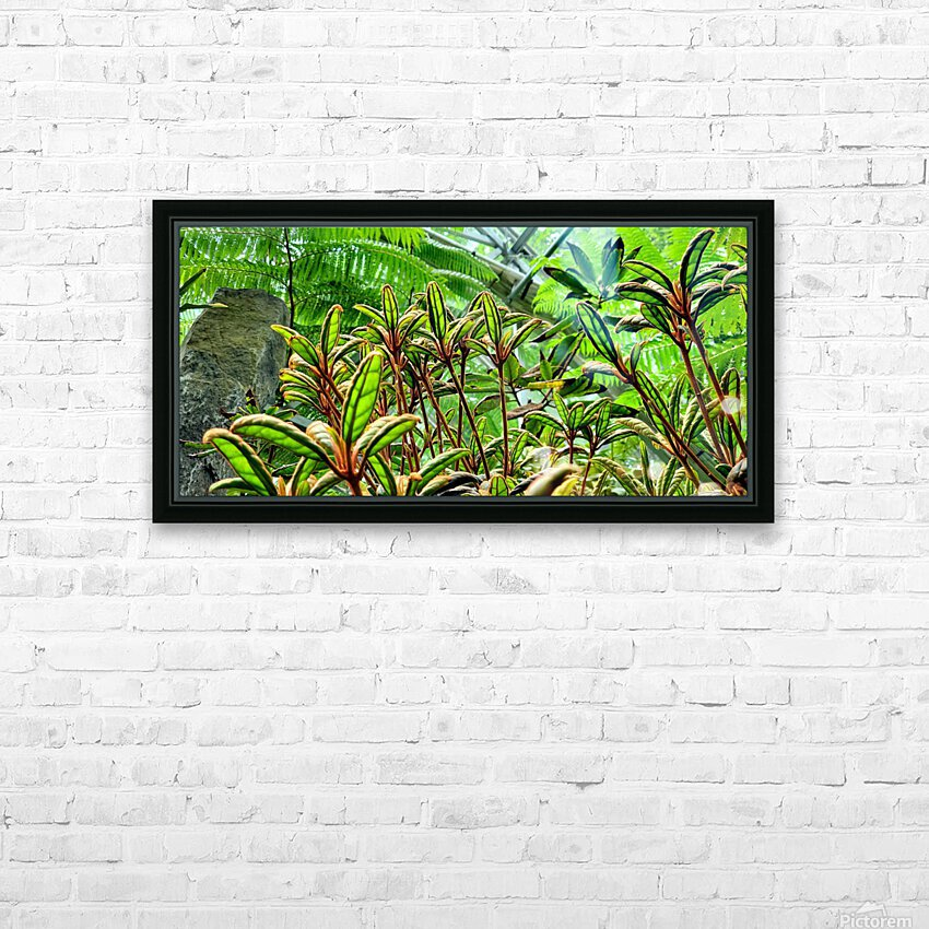 The Greenhouse HD Sublimation Metal print with Decorating Float Frame (BOX)
