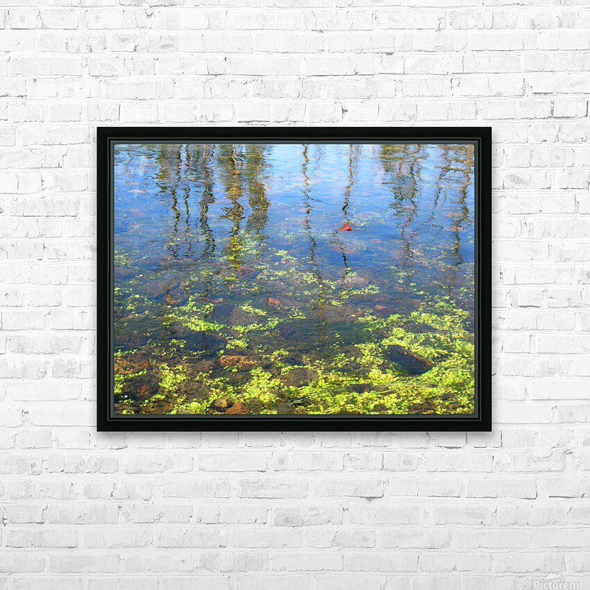 Dragonfly on the Madison HD Sublimation Metal print with Decorating Float Frame (BOX)