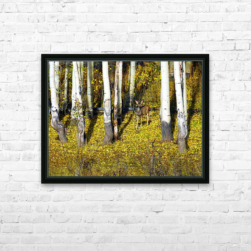 Baby Deer in Old Aspen Trees HD Sublimation Metal print with Decorating Float Frame (BOX)